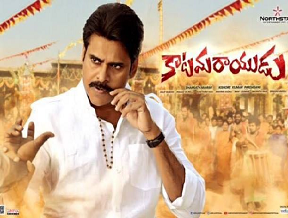 No Reporting On Katamarayudu USA Collections