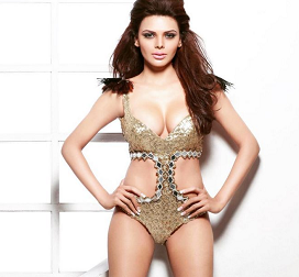 Hot Pics: Sherlyn Chopra's Wild Poses